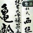 画像4: 亀齢 純米大吟醸四拾五 生酒1.8L (4)