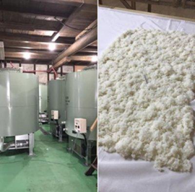 画像2: 【季節限定】山岡酒造  瑞冠 純米吟醸こわっぱ 袋しぼり しずく生酒 亀の尾 720ml