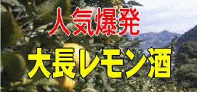 画像1: 中尾醸造 大長 檸檬酒500ml(これは清酒ではなく甘味果実酒です)