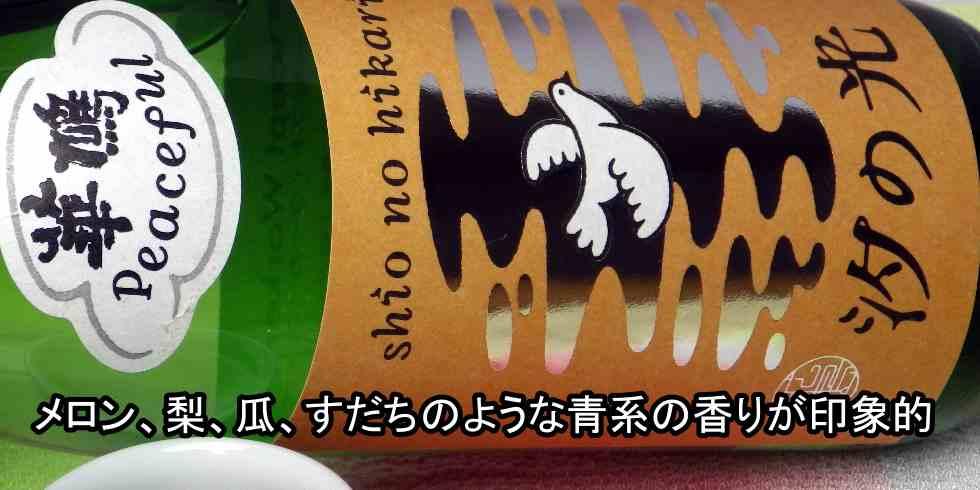 榎酒造 華鳩 純米吟醸 生酒 汐の光